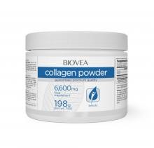 collagen-powder